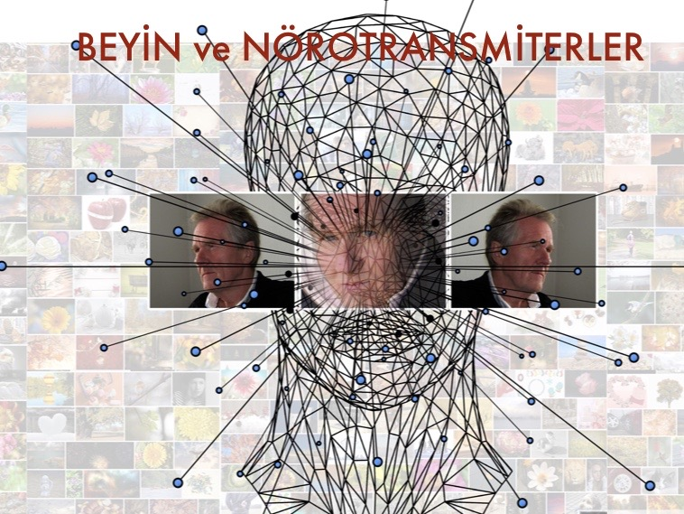 Beyin ve Nörotransmiterler